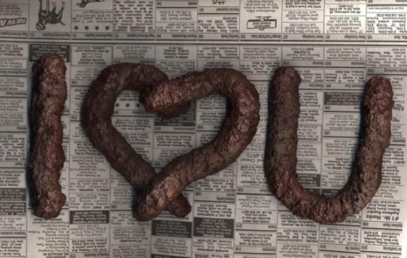 Fake Dog Poo-15 Disgusting Valentine's Day Gifts Ever