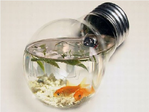 Lightbulb-Creative Aquariums