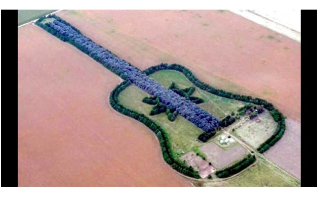Guitar-Shaped Forest-Surprising And Unusual Things Shaped Like A Guitar