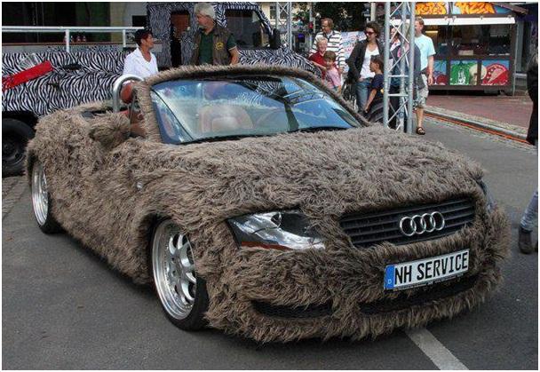 Fur Car Cover-Creative Car Covers
