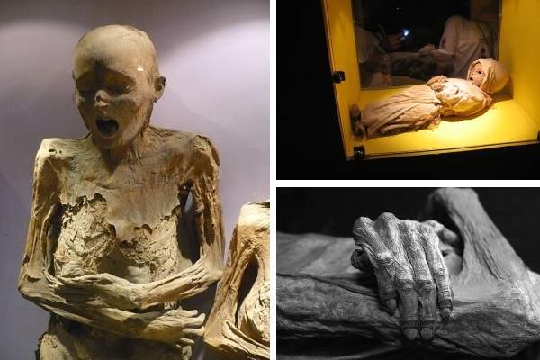 Museum of the Mummies-World's Most Frightening Museums
