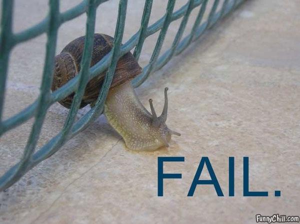Selfishness Supreme-Hilarious Fence Fails