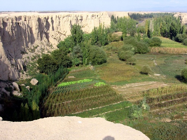 Turpan Oasis, China-Beautiful Oases Around The World