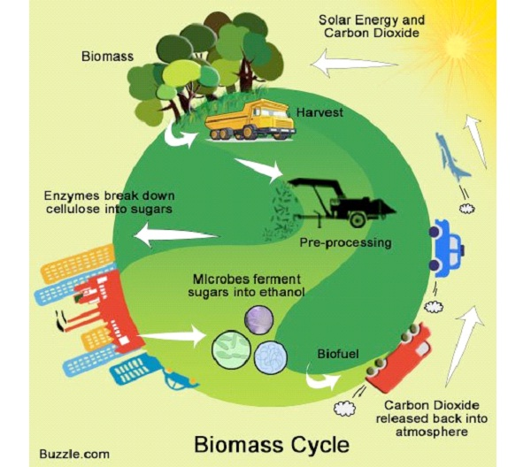 the advantage of using biomass energy as an alternative source of power We want electricity to power our lives we all use energy to biomass was the primary source of energy biomass now renewable energy energy sources.