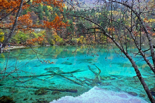 Five Flower Lake, China-Most Amazing Lakes On Earth