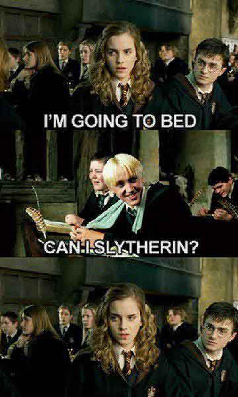 Mind If I Slytherin?-15 Hilarious Harry Potter Memes Ever
