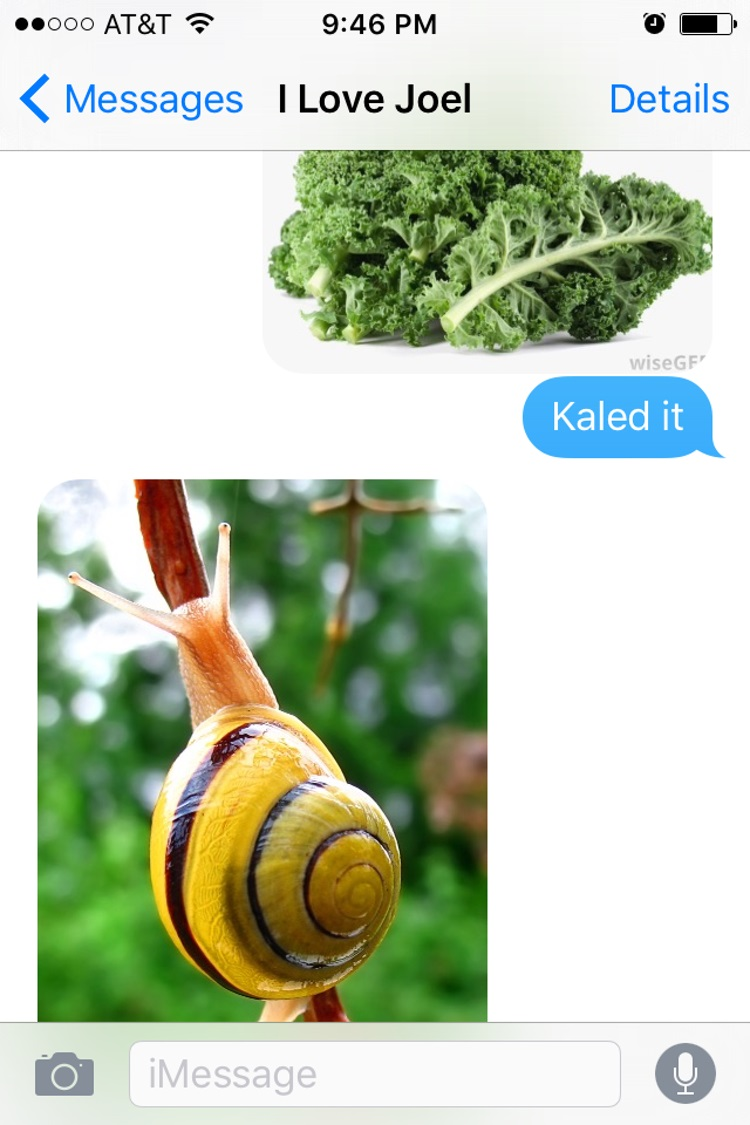 Snailed it-15 Hilarious Images Of A Couple's Pun Texting
