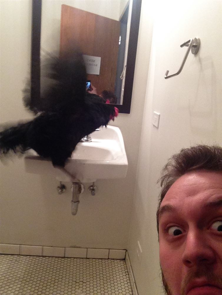 Black Cock Spotted at a Public Bathroom-15 Strangest Moments Ever Caught In Restrooms