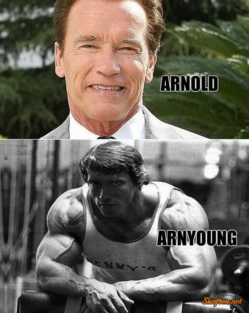 Arnold Schwarzenegger-15 Celebrity Name Puns That Are Hilarious