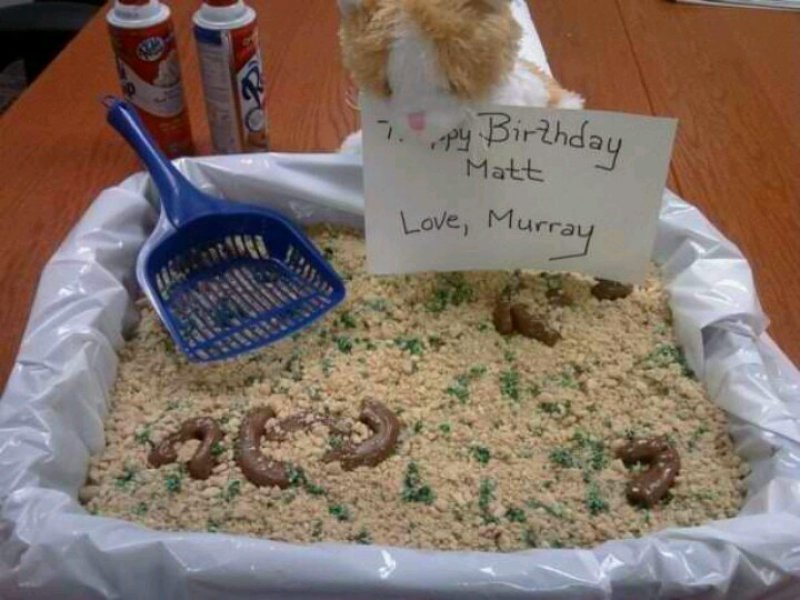 Litter Box Cake-15 Most Disgusting Yet Hilarious Cake Fails Ever