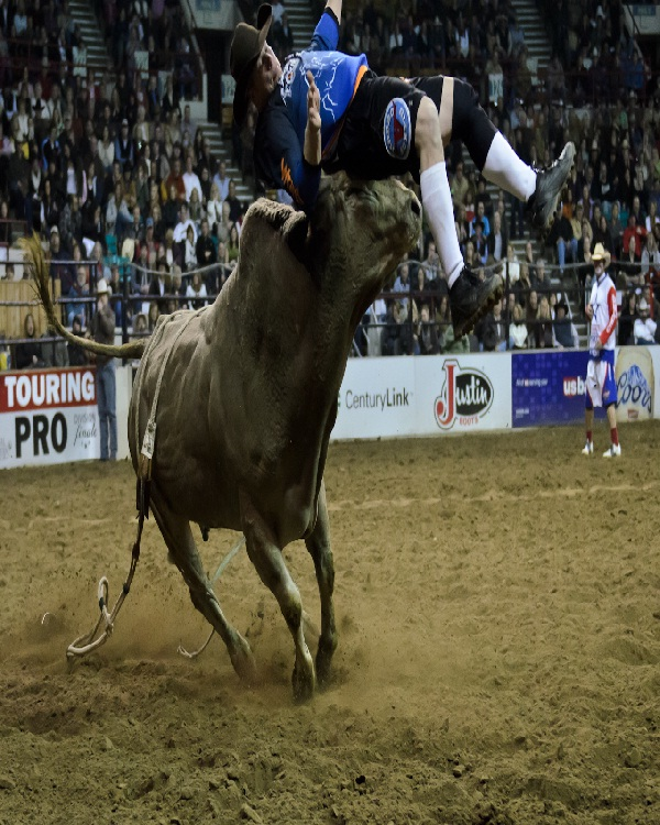 Bull riding-Most Dangerous Sports In The World