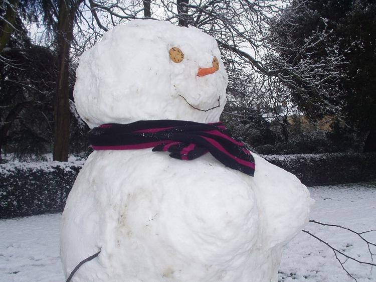 Boobalicious-Craziest Snowmen Ever
