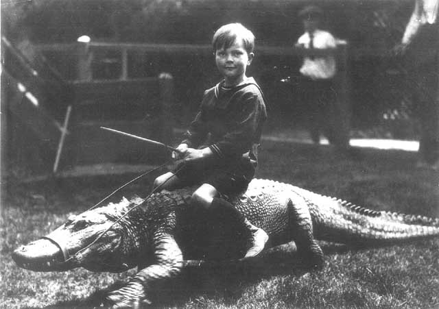 Riding the alligator-Meet Chuck Norris's Wife And Kids