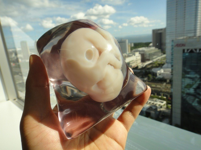 The Fetus And Glass Paperweight-Coolest Paperweights
