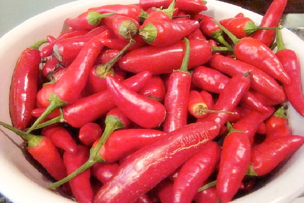 Chili Peppers-Fat Burning Foods