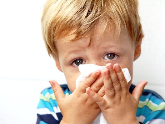 Common Cold-Most Dangerous Viruses In The World Today