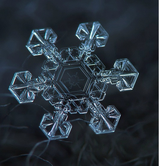 Twinkle, Twinkle Little Star-Awesome Close-Up Pictures Of Snowflakes By Alexey Kljatov