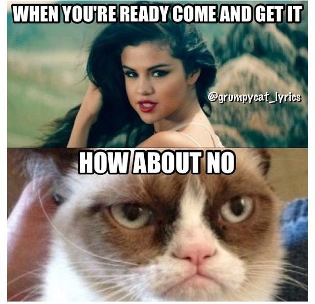 Cat Not Impressed-12 Best Selena Gomez Memes Ever