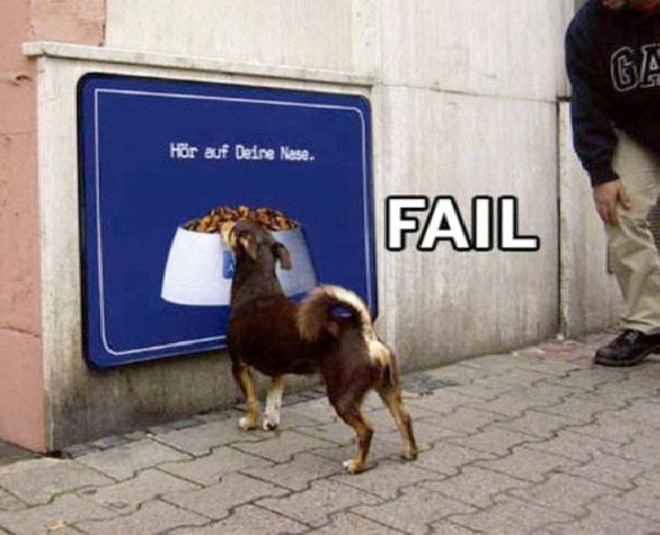 It Looks Real-Funny Animal Fails