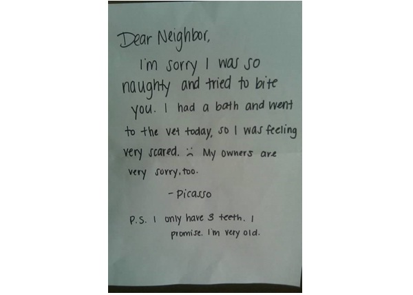 Apology from a Dog-12 Hilarious Apology Notes Ever
