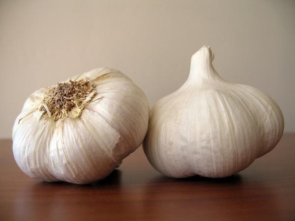 Garlic-Best Cancer Preventing Foods