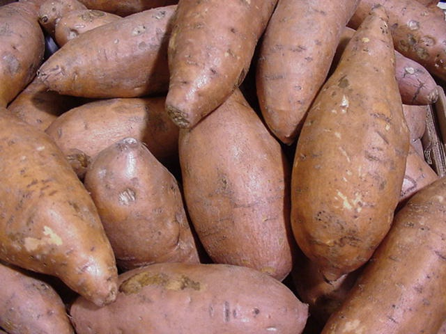 Sweet potatoes-Foods That Suppress Your Appetite