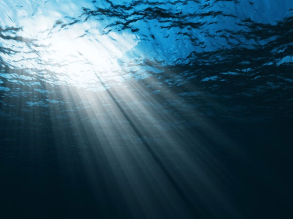 Salty ocean-Crazy Science Facts You Never Knew