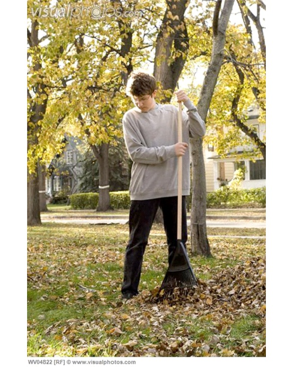 Rake Leaves-How To Make Money As A Teen