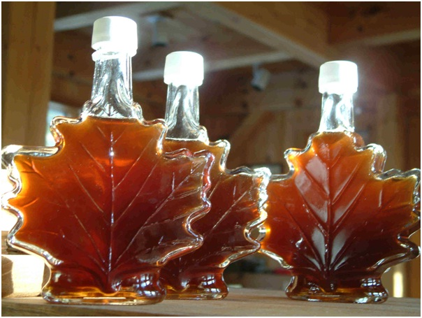 Maple Syrup Course-Bizarre College Courses