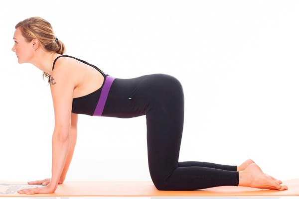 The cow-Simple Yoga Positions For Everyone