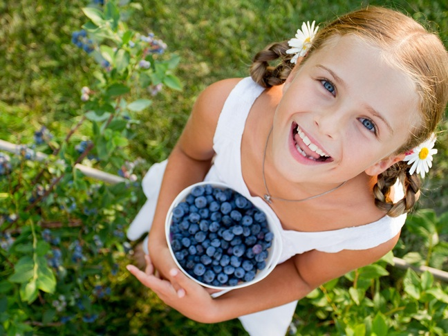 Berries-Foods That Are Beneficial For Your Brain