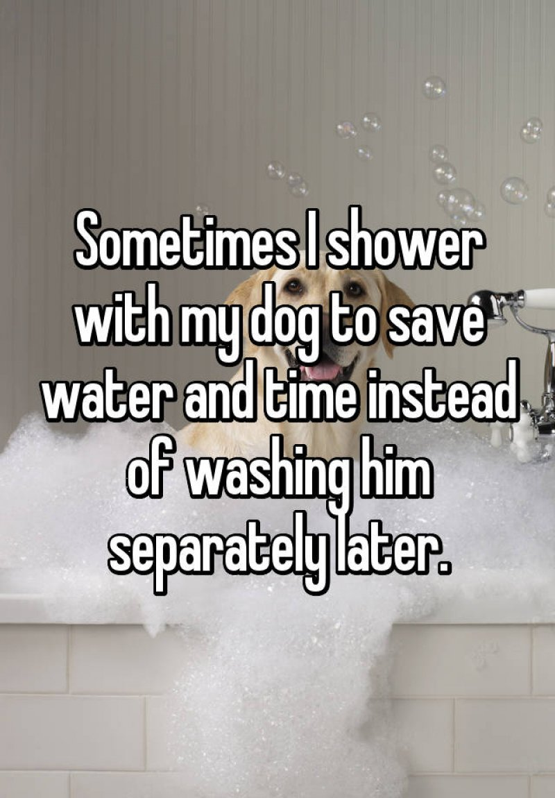 Shower with Dog; Save Time and Water! -15 Ridiculous Life Hacks For All The Lazy People Out There