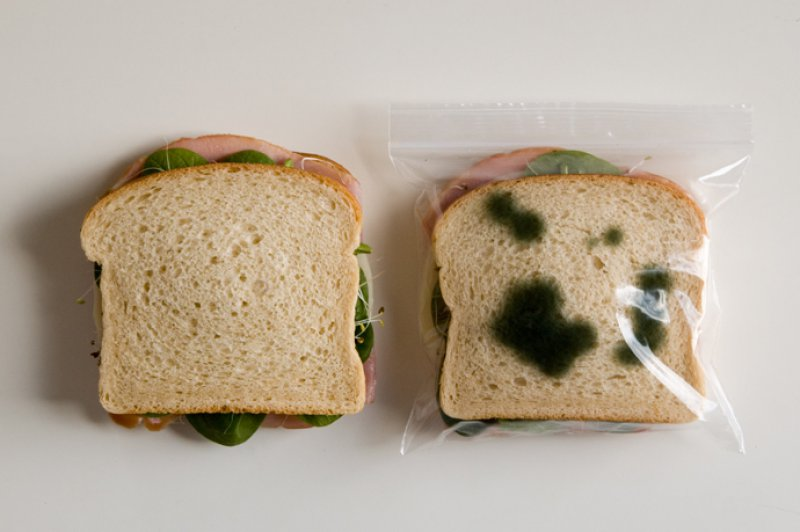 """Antitheft Food Bags-15 Amazing Photos That Will Make You Say """"What A Time To Be Alive."""""""