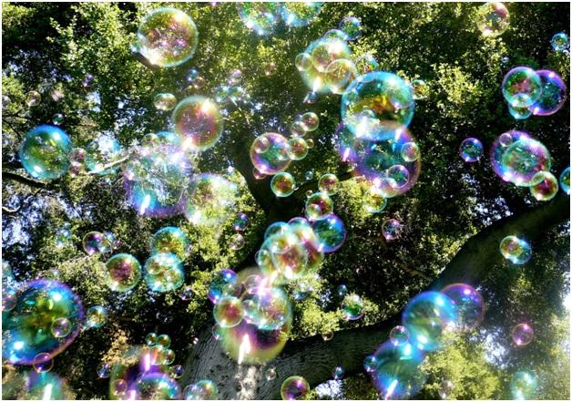 Bubbles Course-Bizarre College Courses