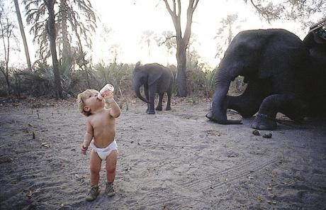 Just playing with the elephants-Meet Chuck Norris's Wife And Kids