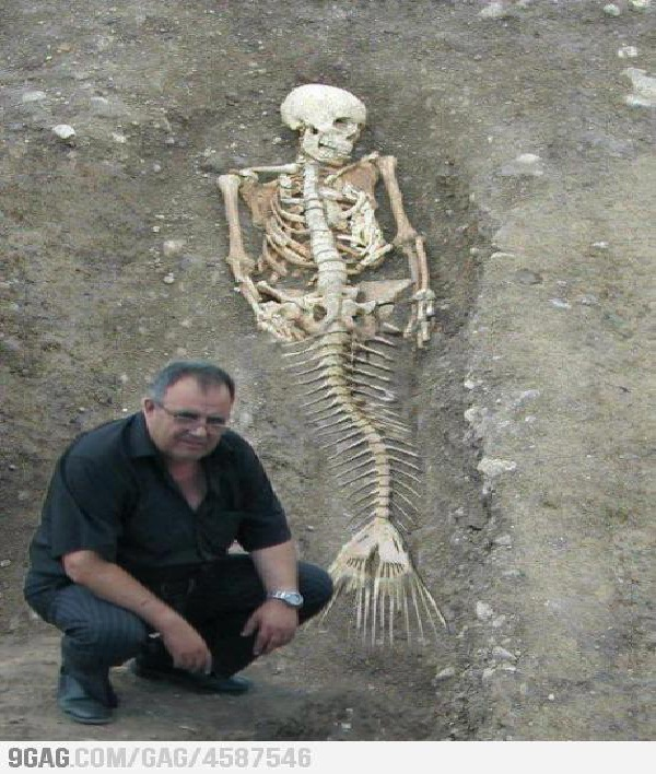Slightly More Intricate Hoax-Real Life Mermaid