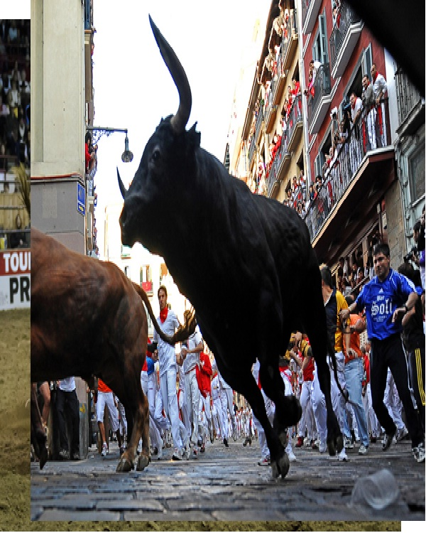 Bull running-Most Dangerous Sports In The World