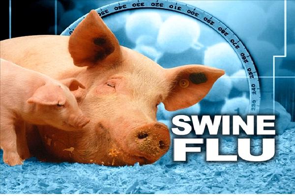 H1N1 VIRUS-Worst Diseases