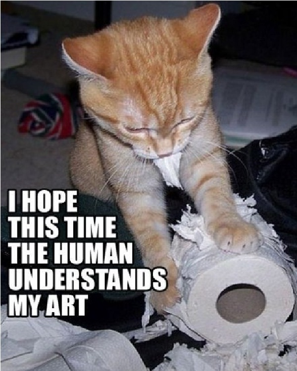 Art cat-Funniest Cat Memes Of All Time