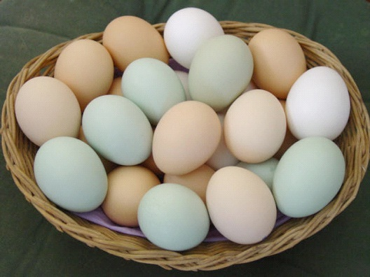 Eggs-Foods Without Gluten