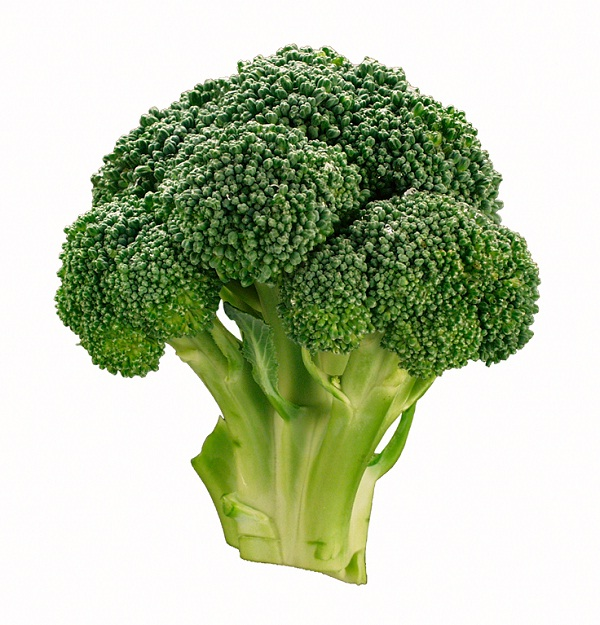 Broccoli-Best Cancer Preventing Foods