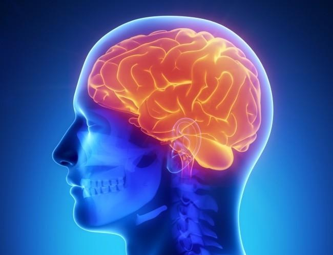 Improves memory-Psychological Effects Of Music On The Brain