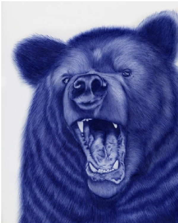 Bear-Amazing Pen Drawings