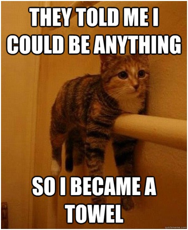 Cat Towel-Best 'They Said I Could Be Anything.' Memes