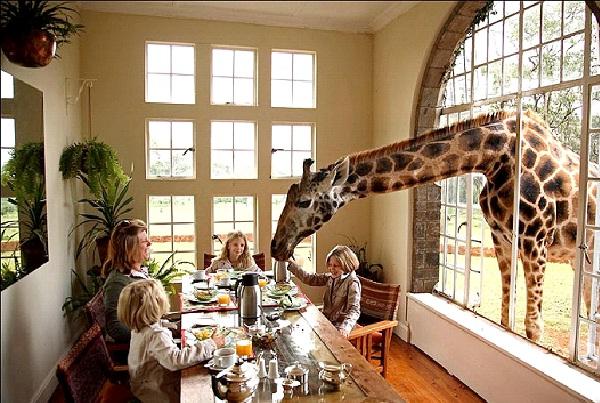 Giraffe Manor-Weirdest Hotels In The World