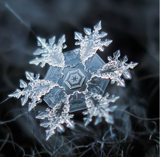 Starry Night-Awesome Close-Up Pictures Of Snowflakes By Alexey Kljatov