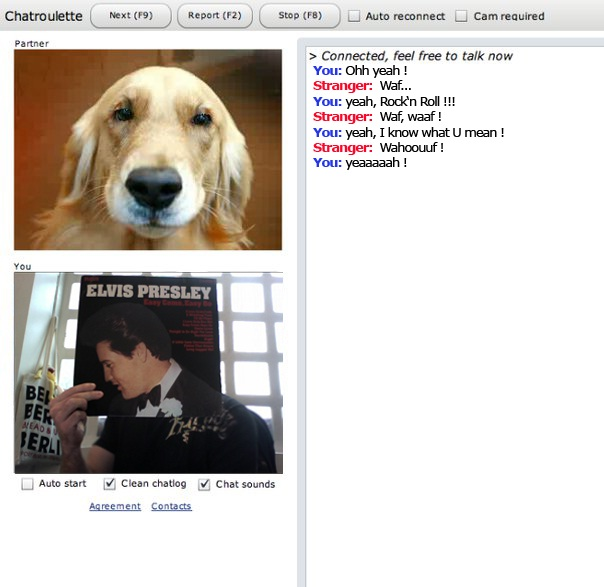 Doggy chat-24 Hilarious Chatroulette Chats That Will Make You Laugh Out Loud