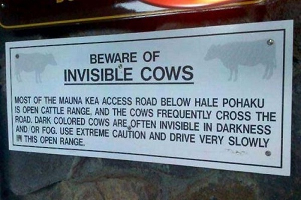 How do we see them?-Hilariously Stupid Signs