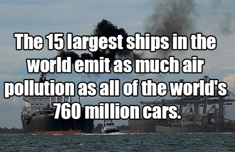 Ships are Huge-15 Amusing Facts That Are Actually True