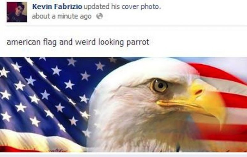 American flag and a parrot??-15 People Who Shouldn't Be On Facebook